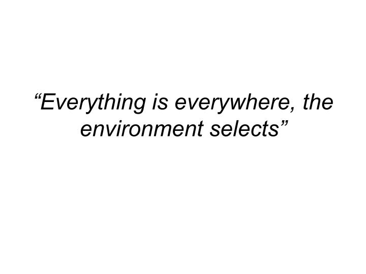 Everything is everywhere the environment selects