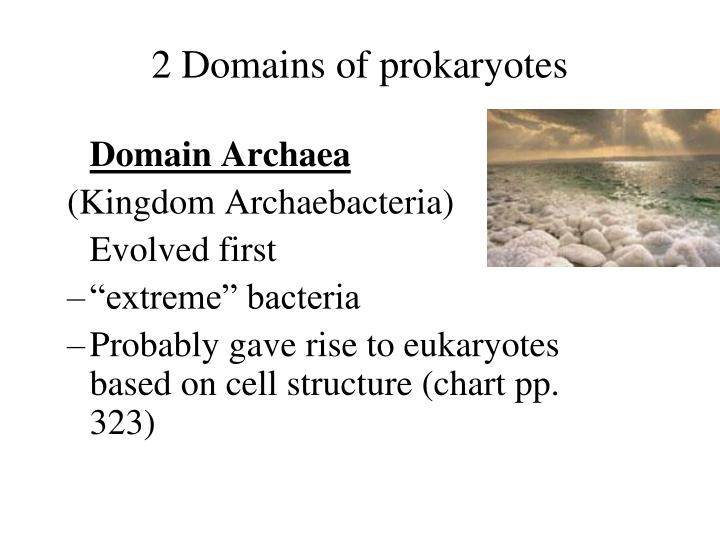 2 Domains of prokaryotes