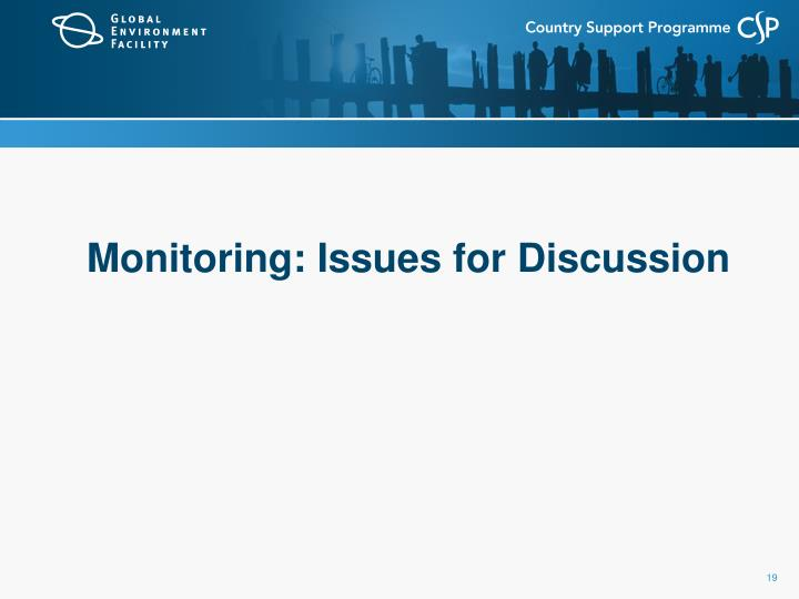 Monitoring: Issues for Discussion