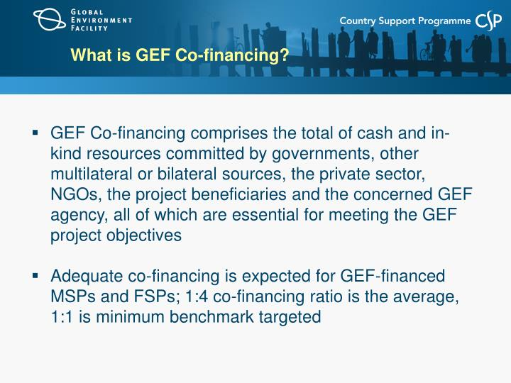 What is GEF Co-financing?