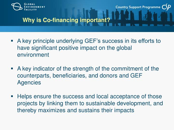 Why is Co-financing important?