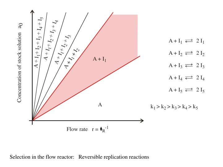 Selection in the flow reactor:   Reversible replication reactions