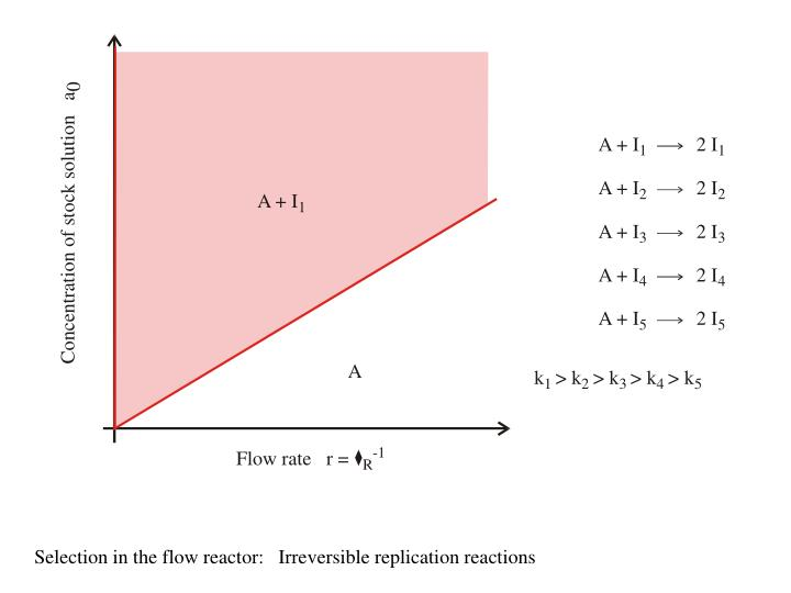 Selection in the flow reactor:   Irreversible replication reactions