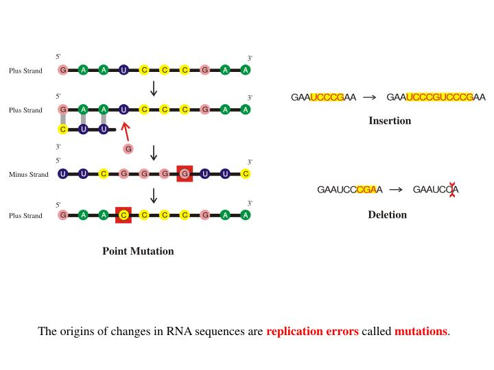 The origins of changes in RNA sequences are