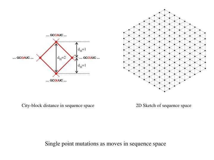 City-block distance in sequence space