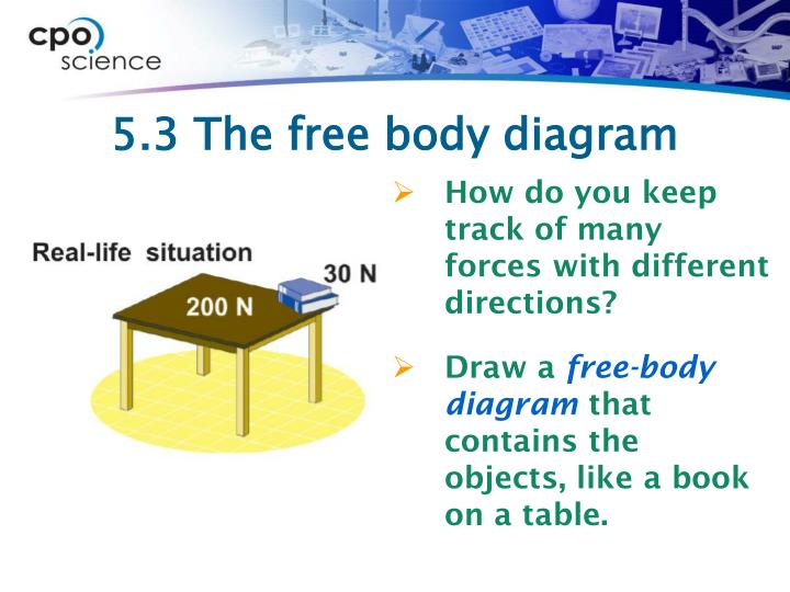 5.3 The free body diagram