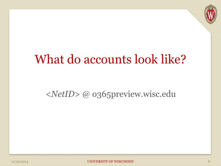 What do accounts look like?