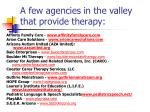 a few agencies in the valley that provide therapy