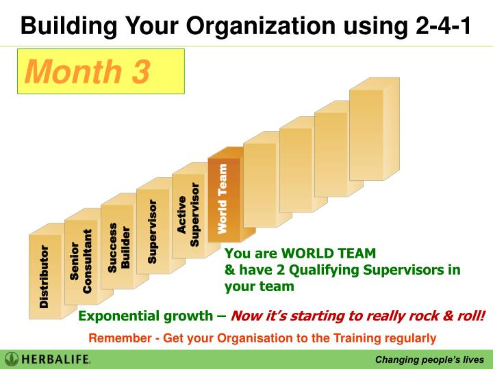 Building Your Organization using 2-4-1