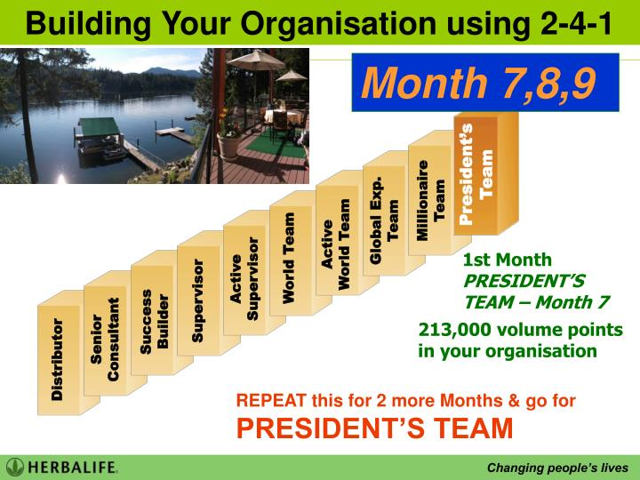 Building Your Organisation using 2-4-1