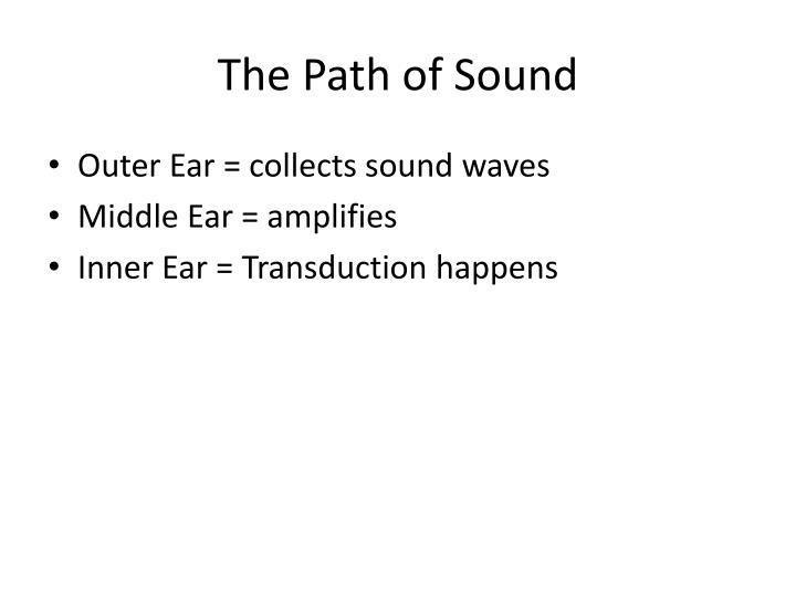 The Path of Sound