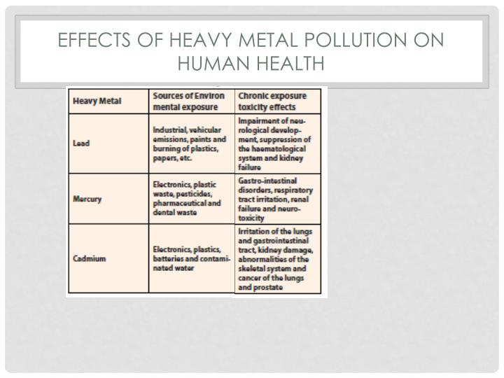 Effects of heavy metal pollutION on HUMAN HEALTH