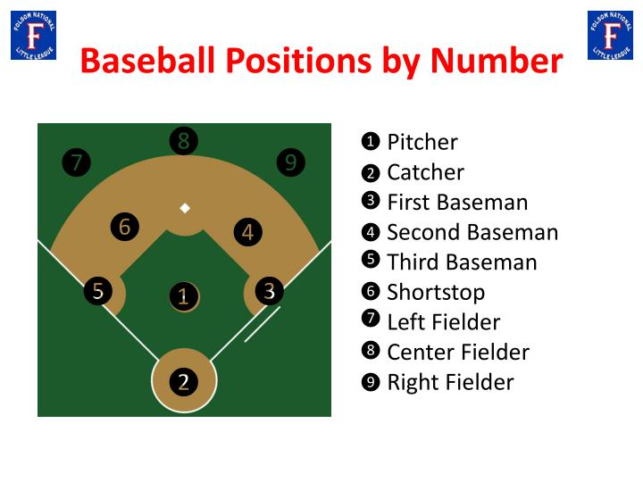 Baseball Positions by Number