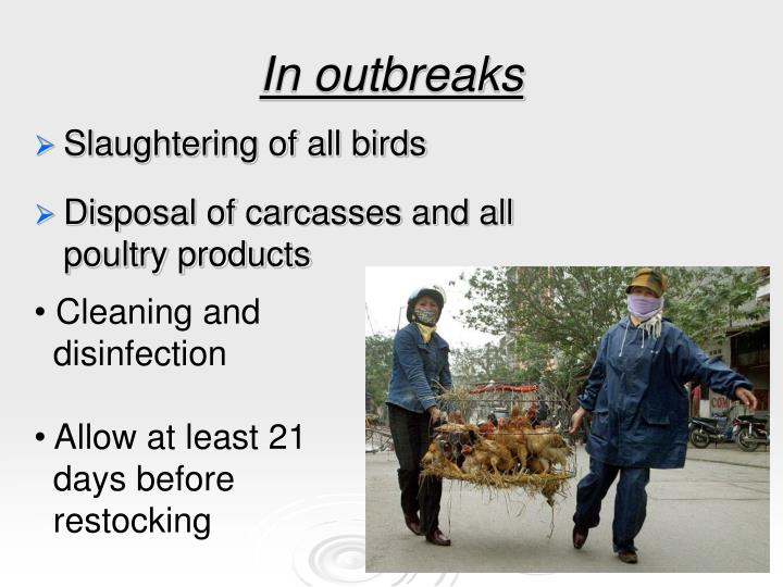 In outbreaks