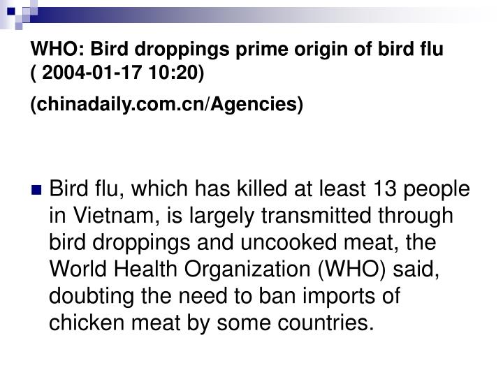 WHO: Bird droppings prime origin of bird flu