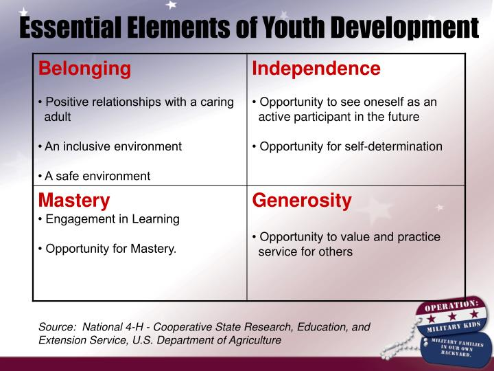 Essential Elements of Youth Development