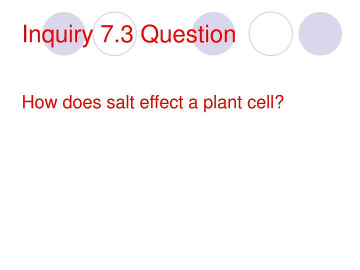 Inquiry 7.3 Question