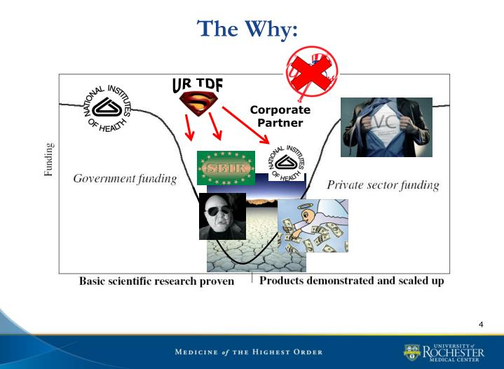 The Why: