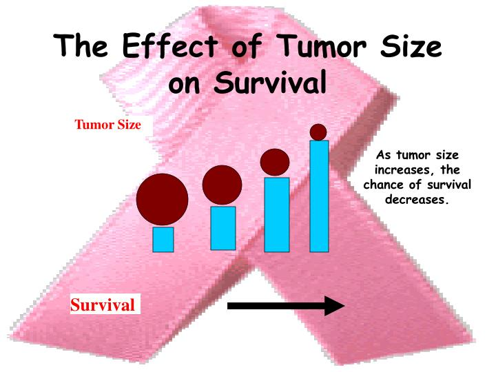 The Effect of Tumor Size on Survival