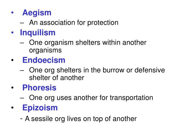Aegism