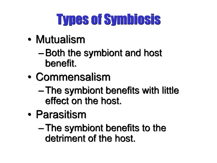 Types of symbiosis