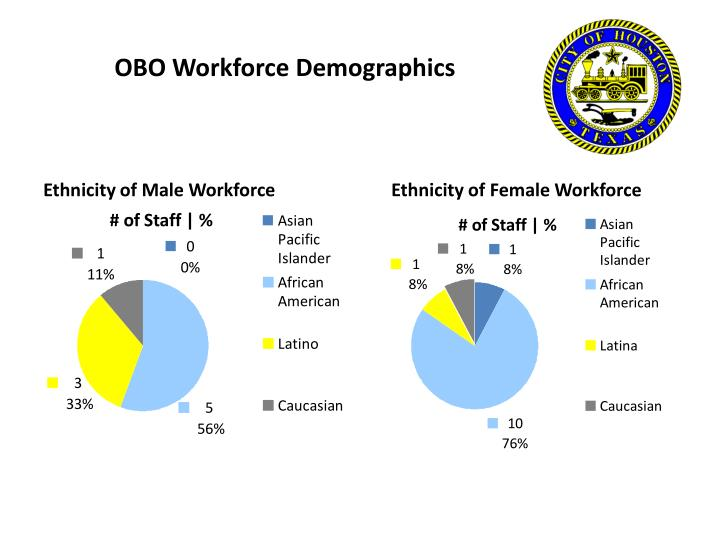 OBO Workforce Demographics