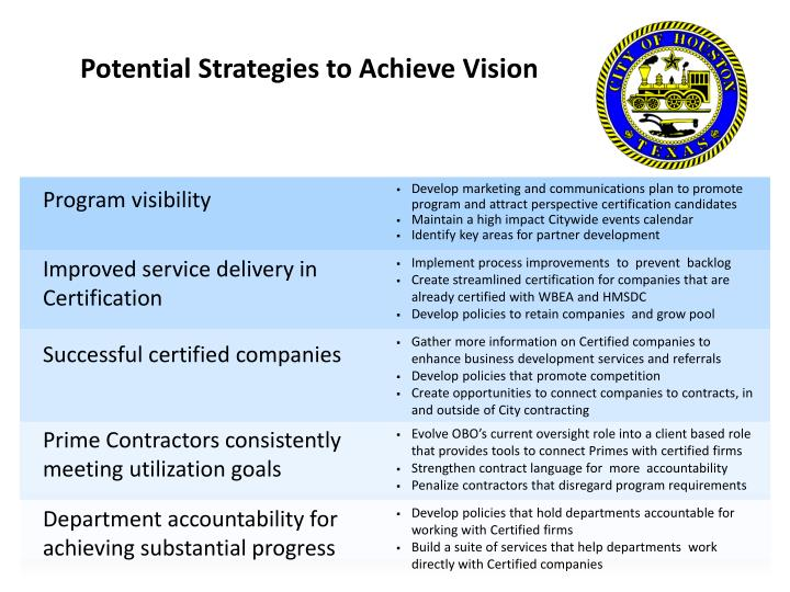 Potential Strategies to Achieve Vision