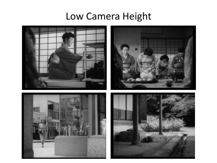 Low Camera Height