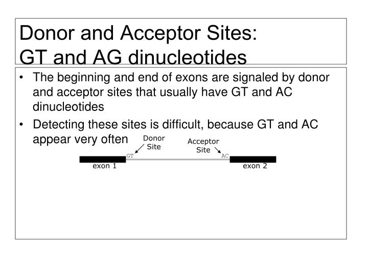 Donor and Acceptor Sites: