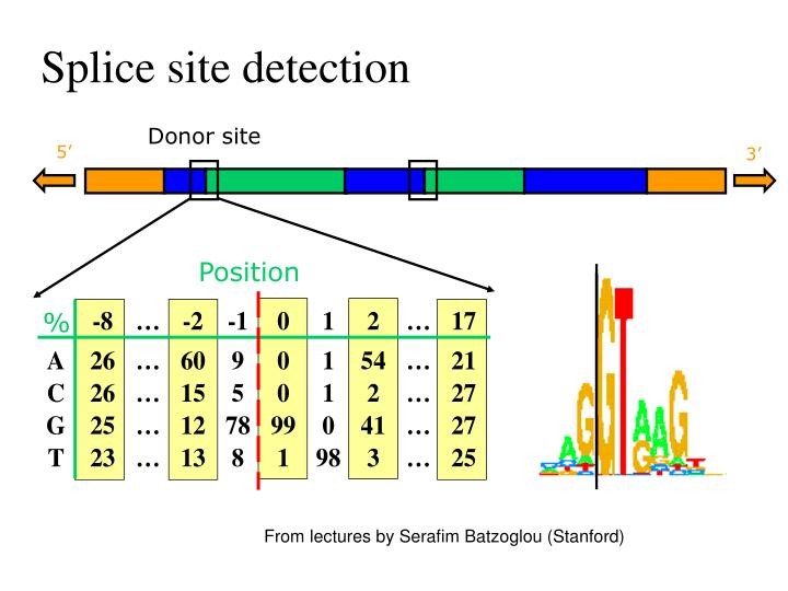 Donor site