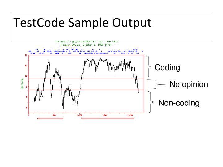 TestCode Sample Output
