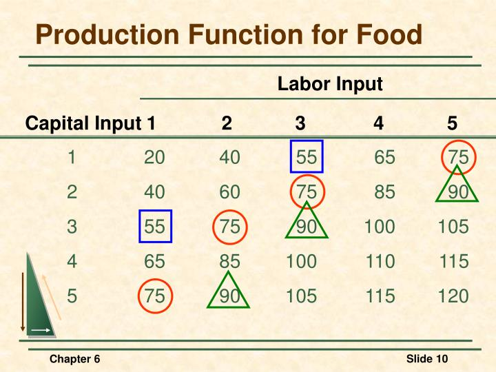 Production Function for Food