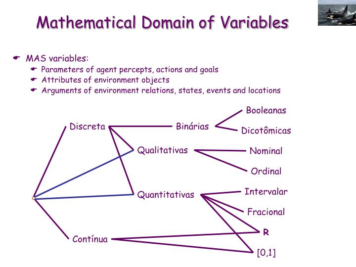 Mathematical Domain of Variables