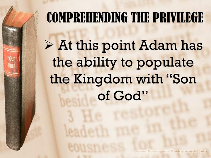 COMPREHENDING THE PRIVILEGE