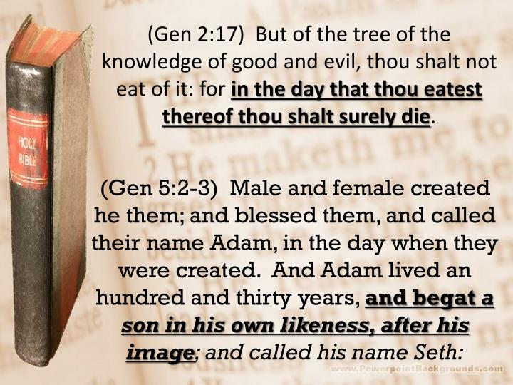 (Gen 2:17)  But of the tree of the knowledge of good and evil, thou