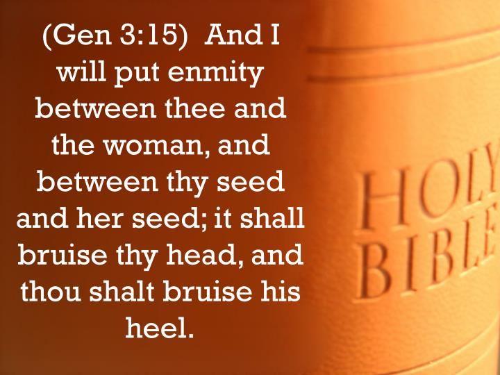 (Gen 3:15)  And I will put enmity between thee and the woman, and between thy seed and her seed; it shall bruise thy head, and thou