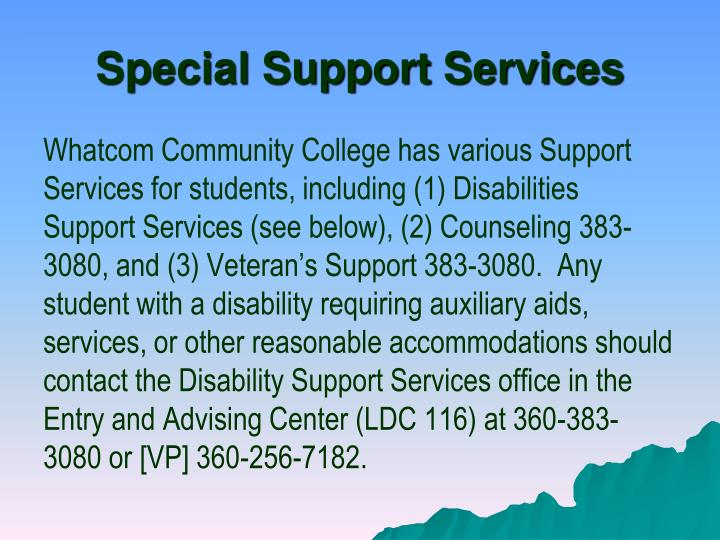 Special Support Services