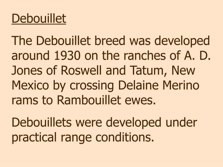Debouillet