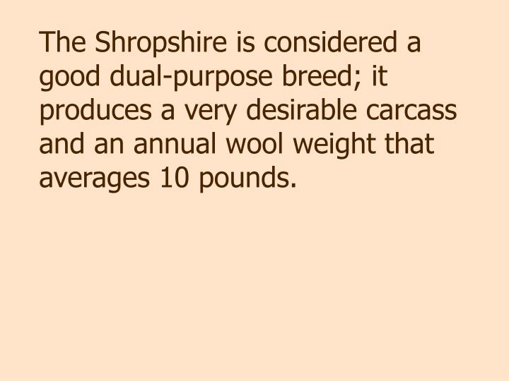 The Shropshire is considered a good dual-purpose breed; it produces a very desirable carcass and an annual wool weight that averages 10 pounds.