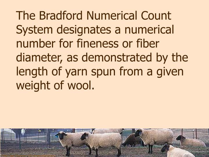 The Bradford Numerical Count System designates a numerical number for fineness or fiber diameter, as demonstrated by the length of yarn spun from a given weight of wool.