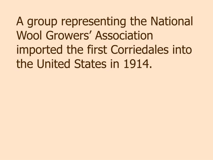 A group representing the National Wool Growers' Association imported the first Corriedales into the United States in 1914.