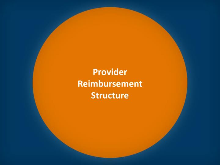 Provider Reimbursement Structure