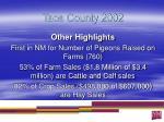 taos county 20023