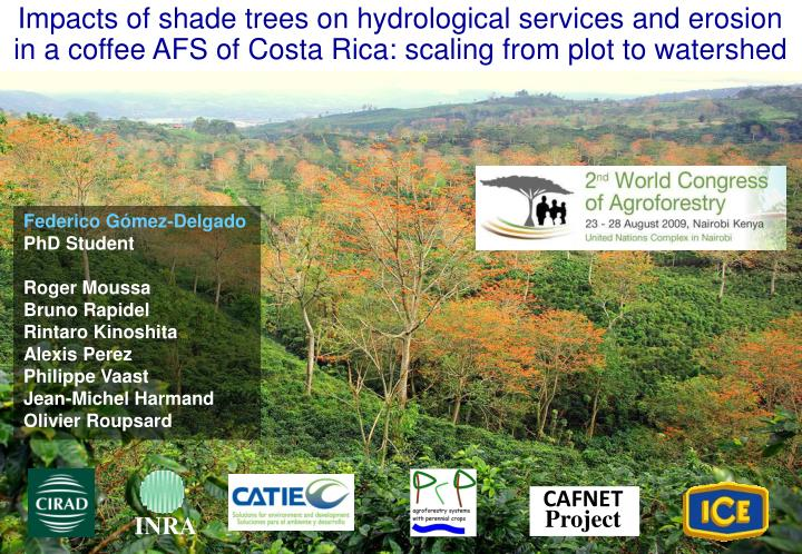 Impacts of shade trees on hydrological services and erosion