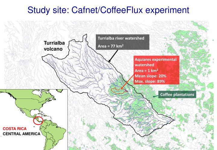 Study site: Cafnet/CoffeeFlux experiment