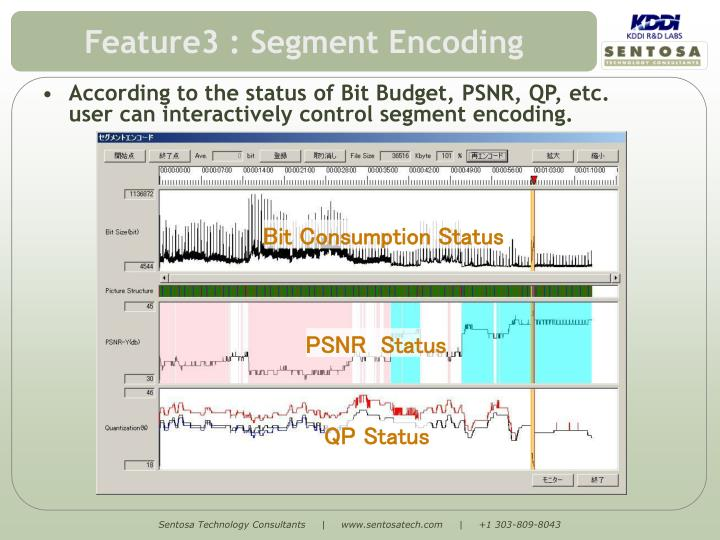 Feature3 : Segment Encoding