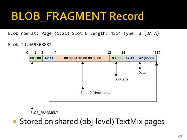 BLOB_FRAGMENT Record