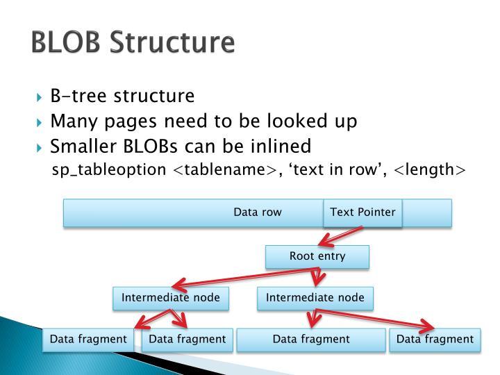 BLOB Structure