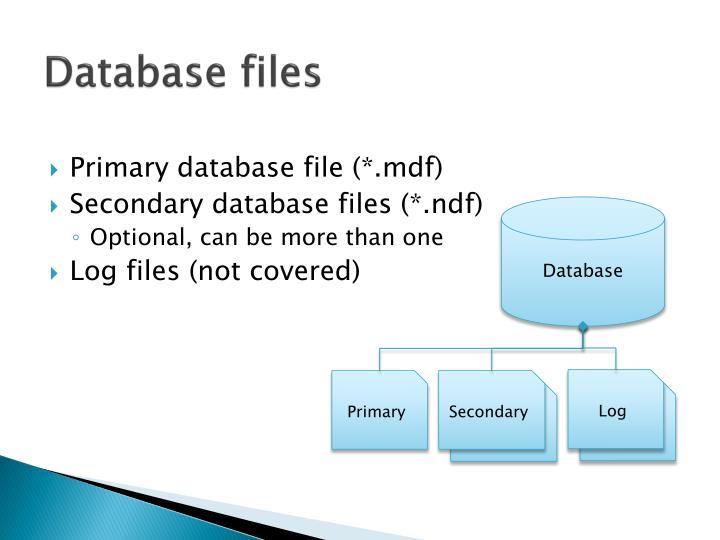 Database files