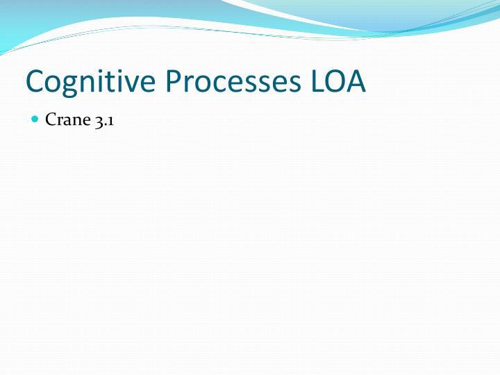 Cognitive Processes LOA